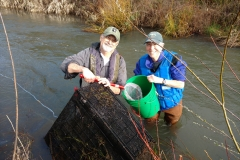Fish Traps Trese and Floyd